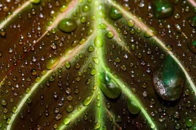 碧云泉G7智能净水机体验,这才是健康饮水的理想选择