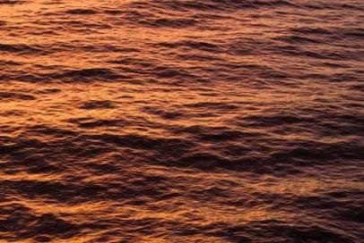 """老人与海,罗永浩与""""鲨壁"""""""