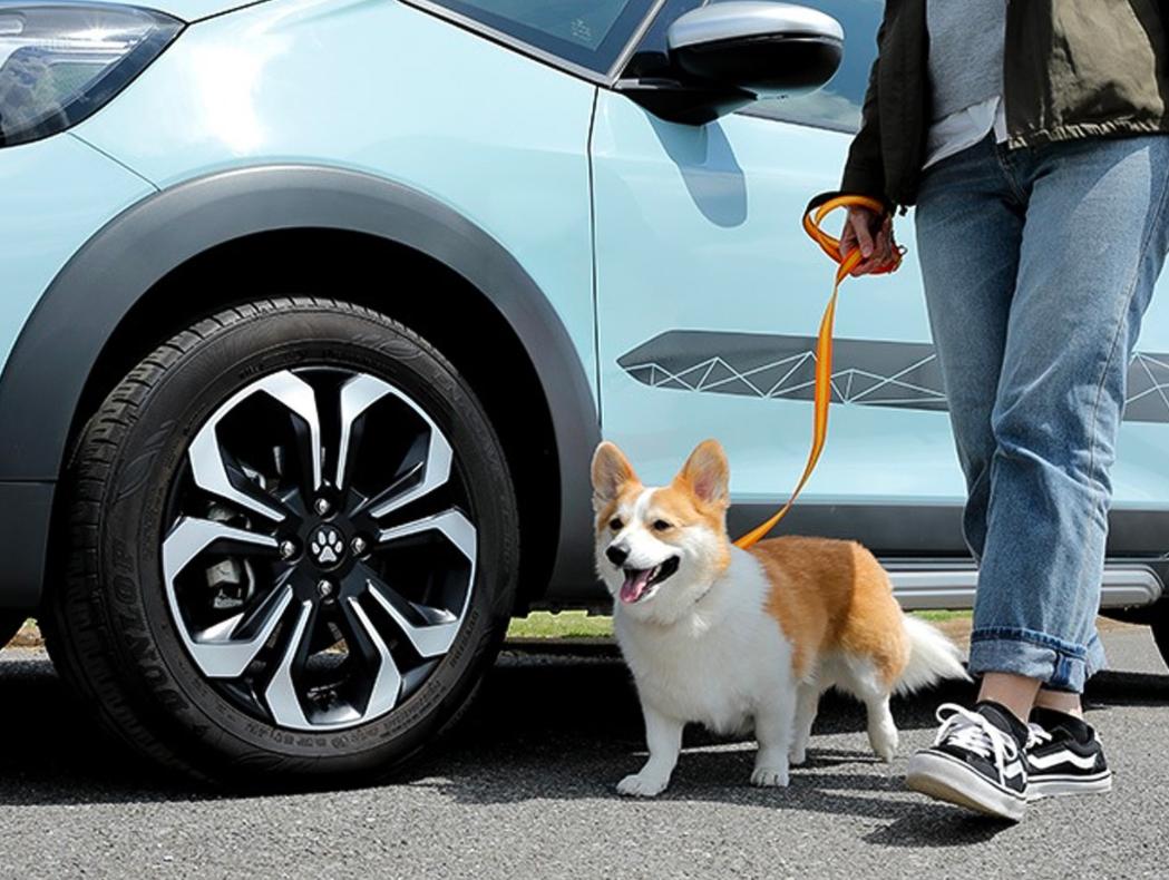 本田汽车推出宠物主题配件